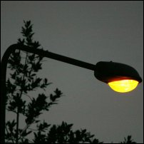 A street lamp, a major cause of light pollution.