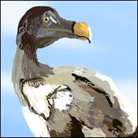 An extinct bird - the Dodo.