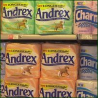 Toilet roll of various brands.