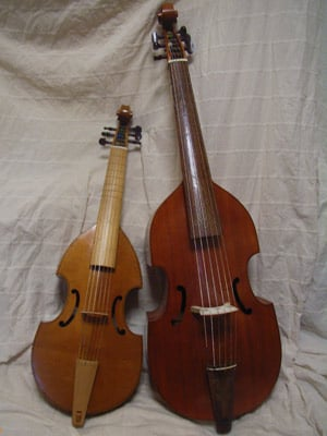 A photo of two viols.
