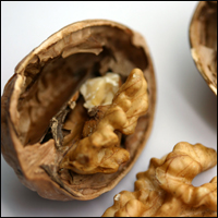 Walnuts split in half.