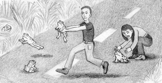 A cartoon sketch of people assisting toads across the road to a safe pond.