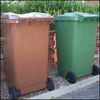 A green and brown wheelie bin.