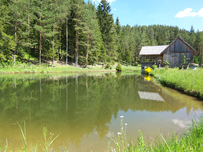 A photograph of a wooden hut by the edge of a pond, in a forest in Austria.