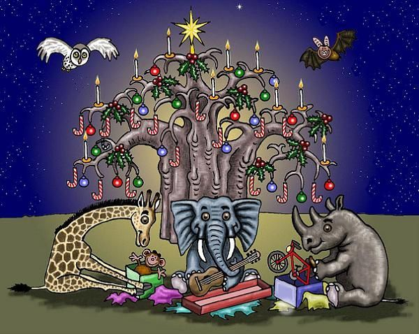 Christmas Greetings from South Africa, by Willem.