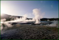 A volcanic geyser blows a jet of water into the air.