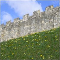 The York Wall.